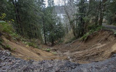 Landslide Deaths From Negligent Logging
