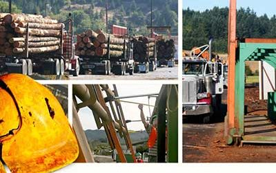 Log Truck Driver Case