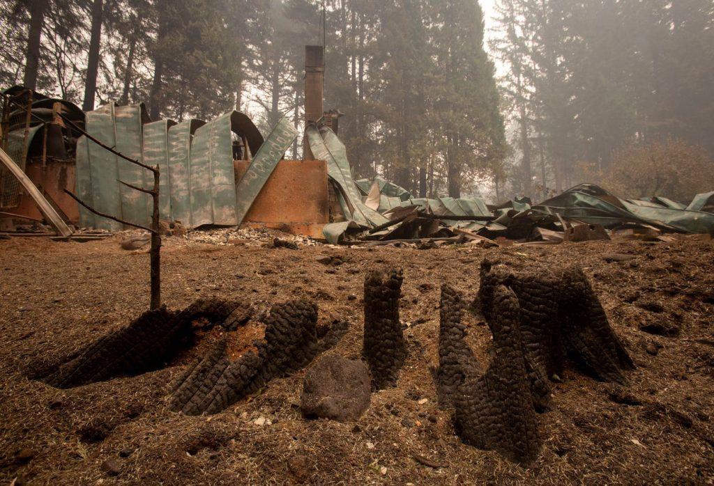 Holiday Farm Fire, Blue River Oregon September 2020